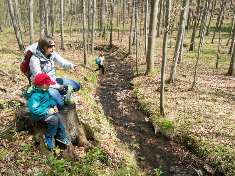 Rodina u potoka v lese.