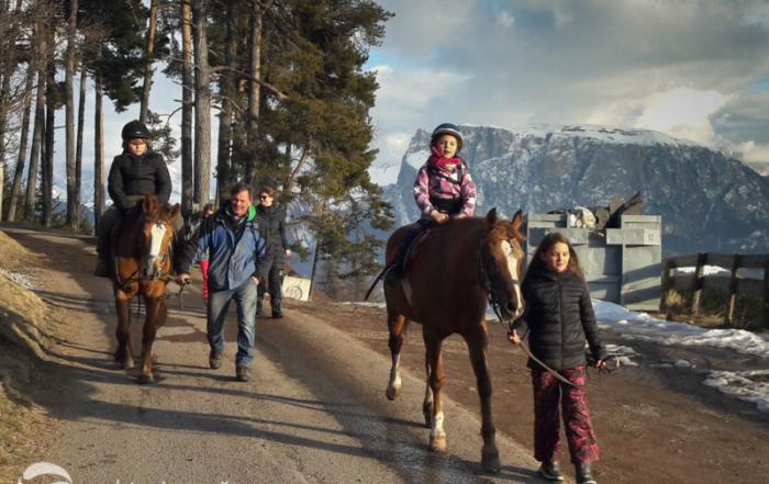 Koně z penzionu Bad Siess.