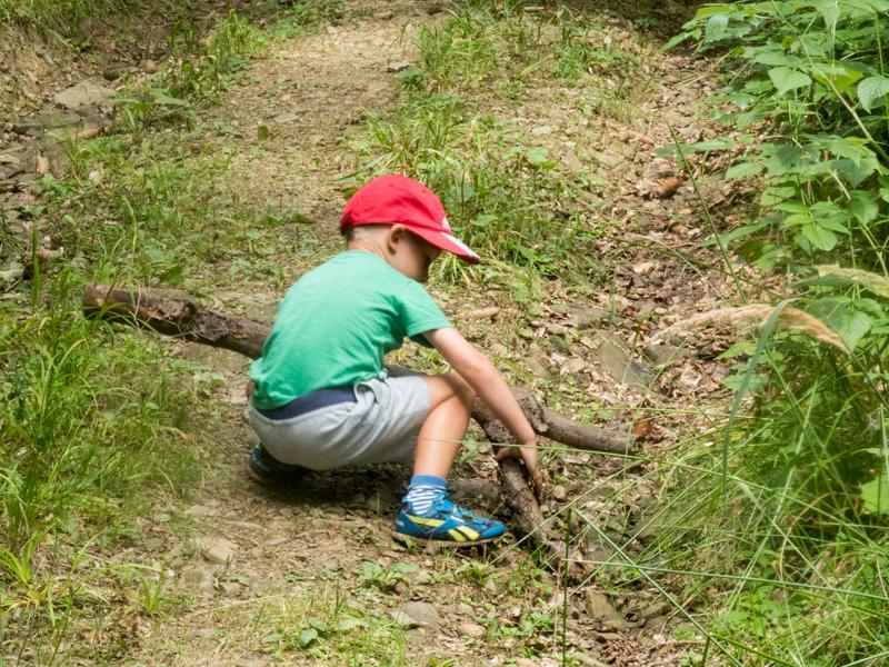 Klacek, nejlepší hračka v lese.