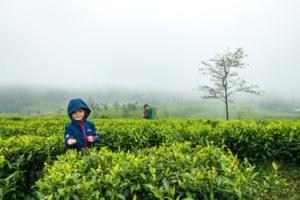 Srí Lanka s dětmi